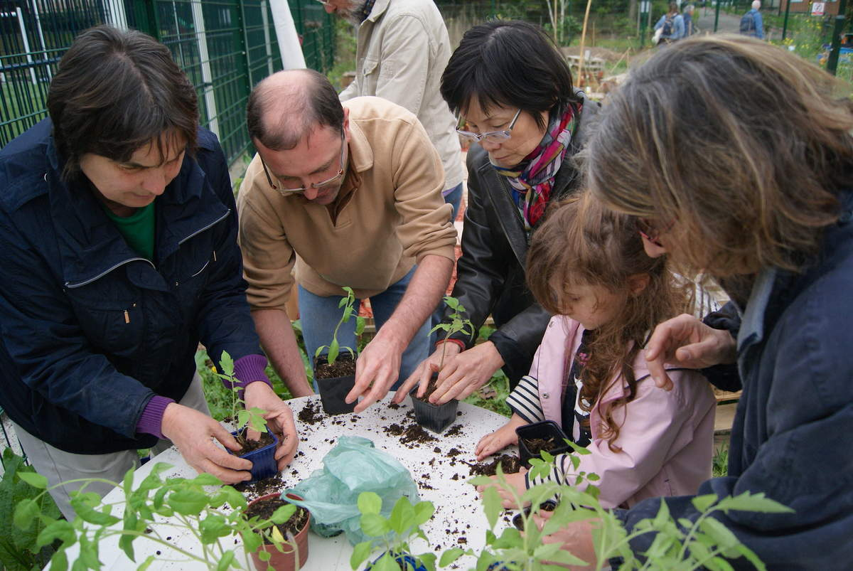 L'atelier jardinage de Martin 22