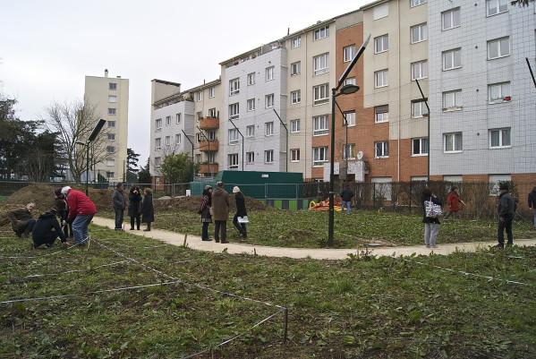 Le jardin des Nouzeaux a pris forme 5