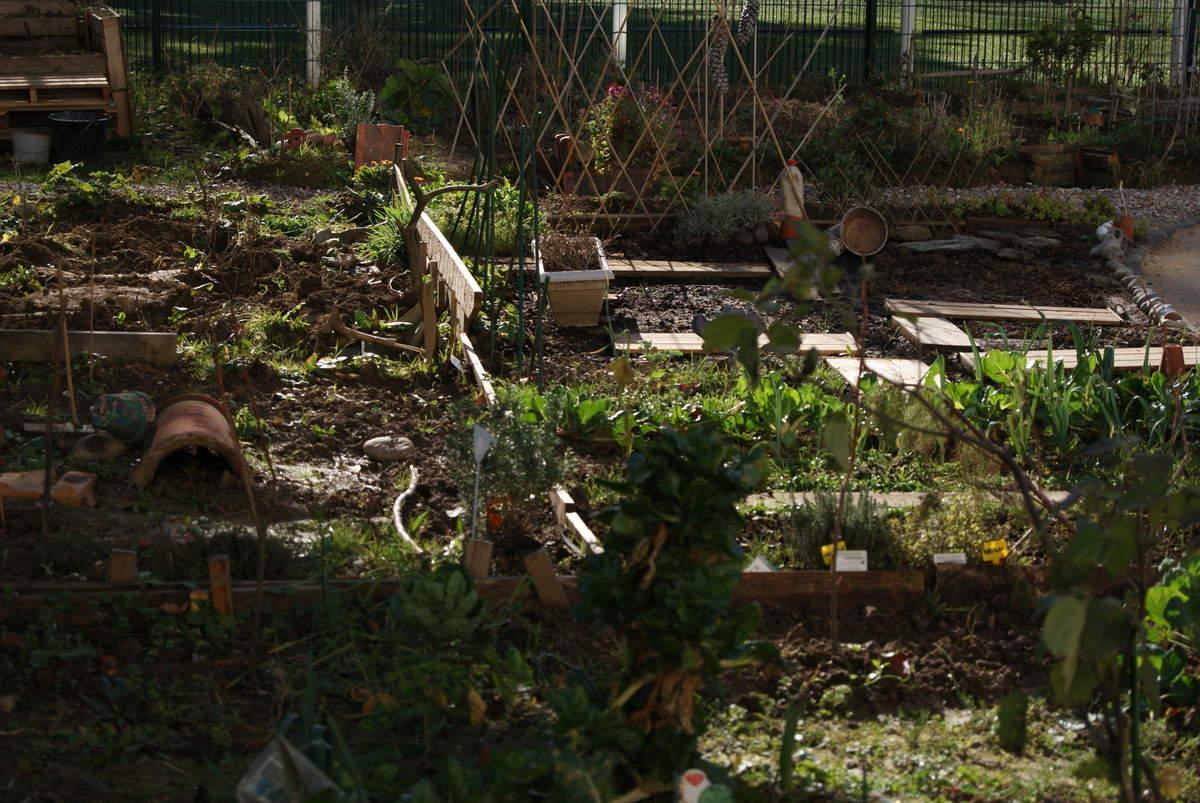 les conseils du jardinier jardin partag des nouzeaux