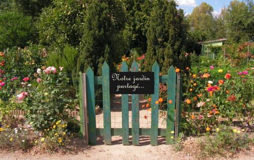 jardin-copie-1
