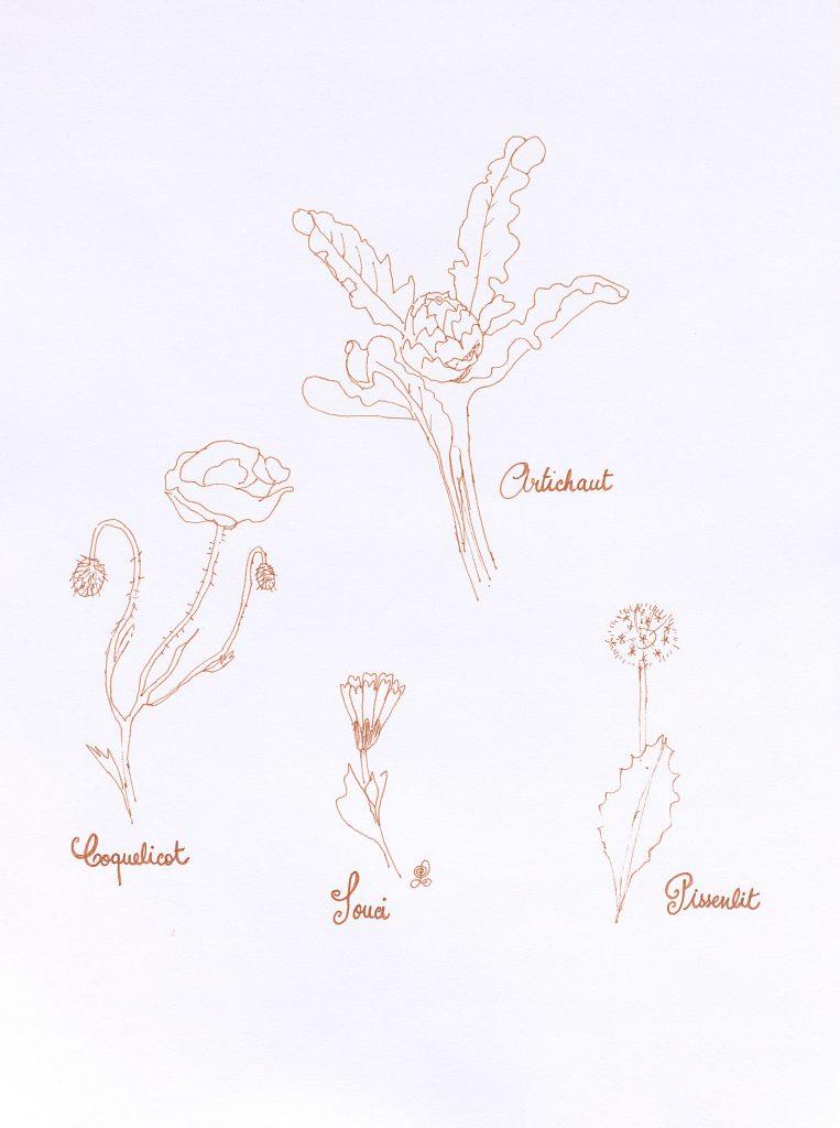"""""""Promenade"""" (pour la planche des fleurs + artichaut)"""