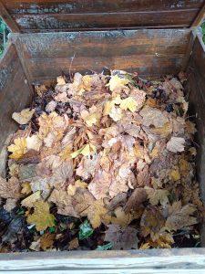Et on recouvre de feuilles